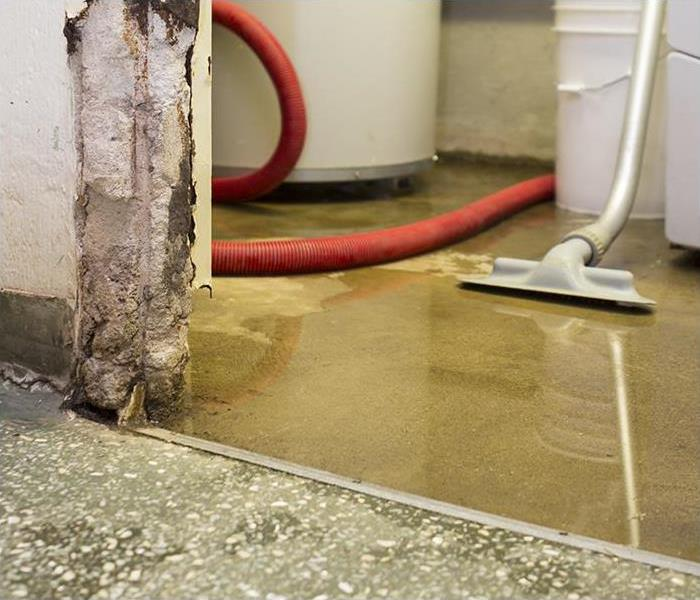 Water Damage Professional Water Removal Protects Families And Their Sarasota Homes