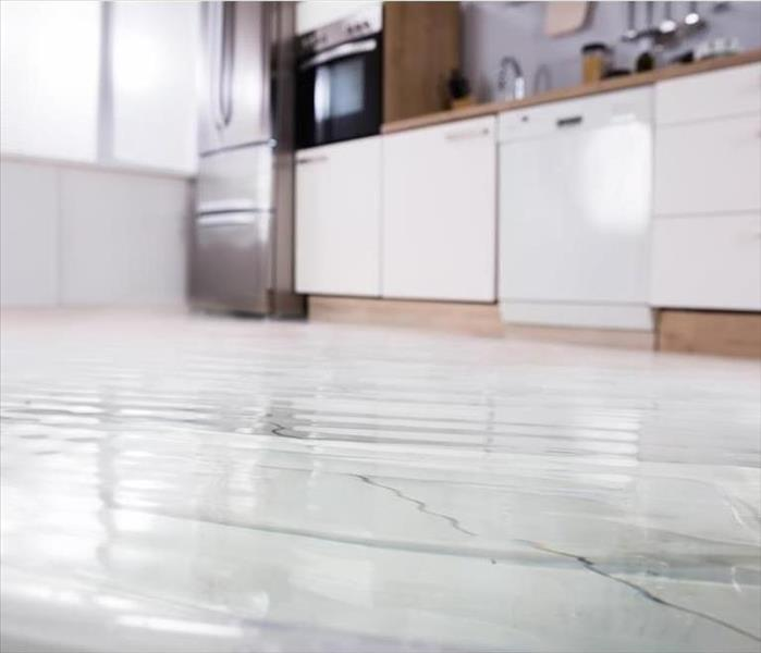 Water Damage When Your Sarasota Home Requires Professional Water Removal