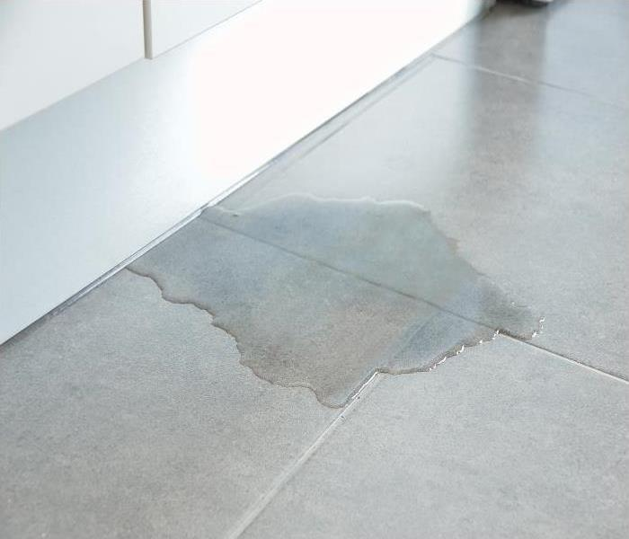 Why SERVPRO Don't Let Secondary Water Damage In Your Sarasota Home Cause You To Panic, Call SERVPRO!