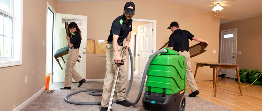 Sarasota, FL cleaning services
